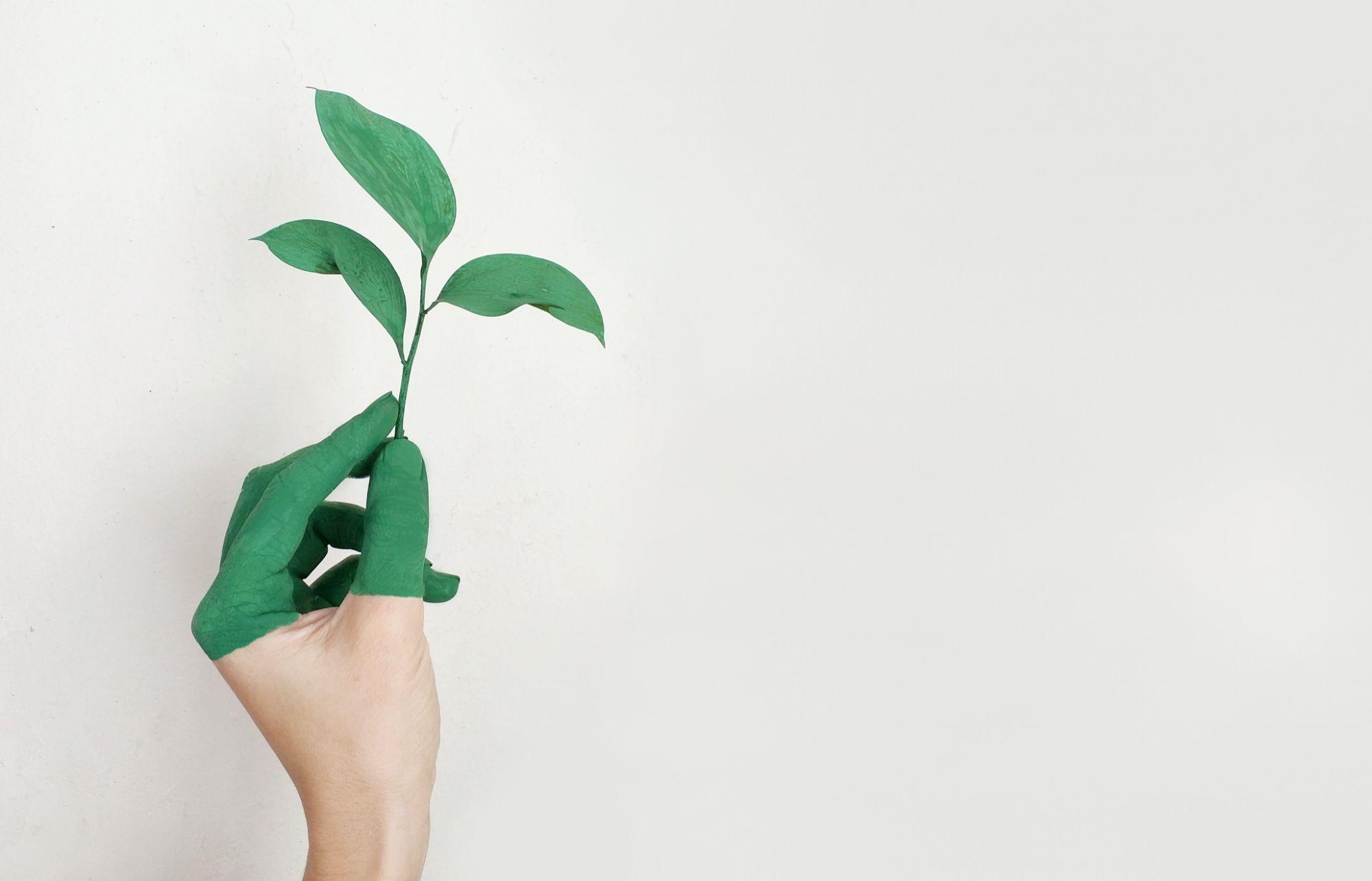 Joy per la salvaguardia dell'ambiente